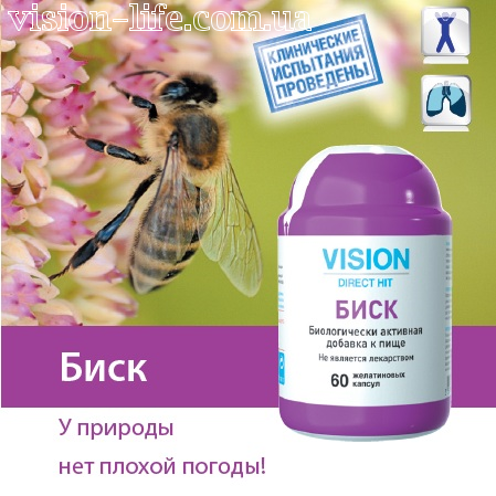 beesk vision 3
