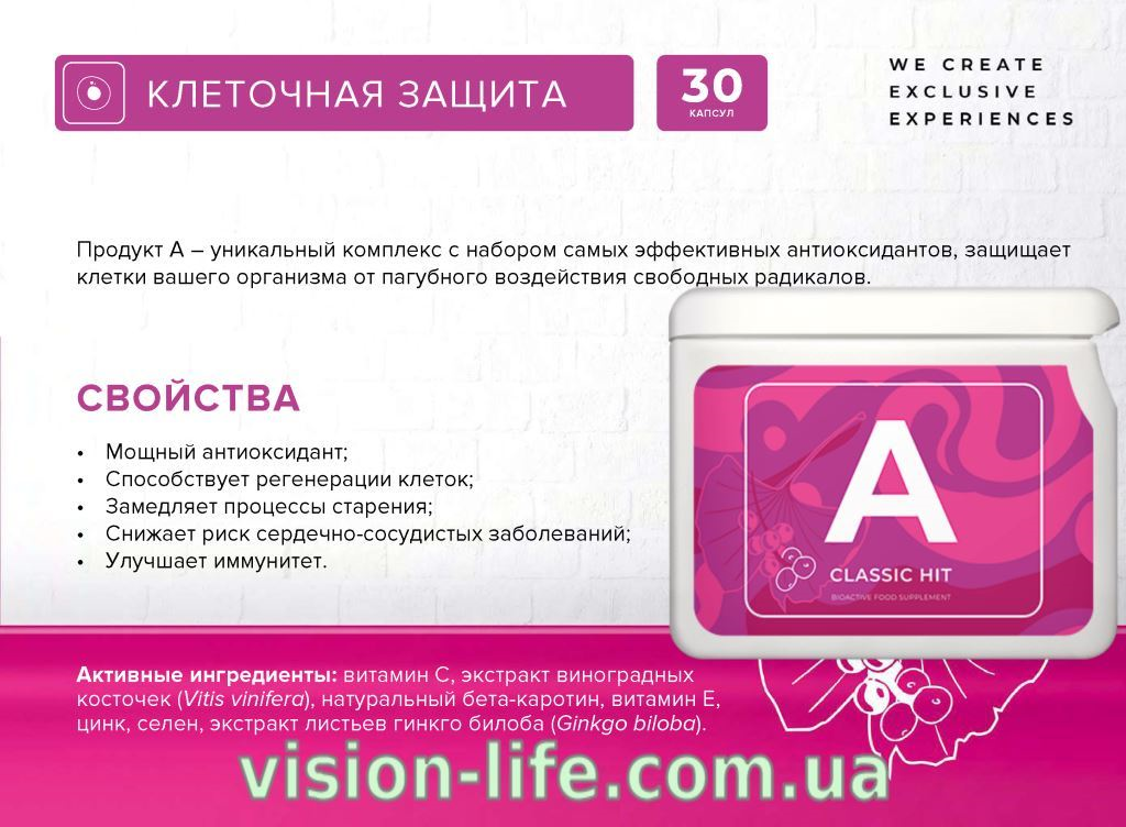 project v antiox vision life 3