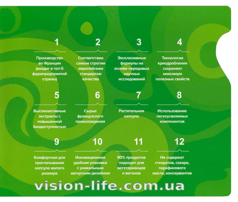 project v vision life1