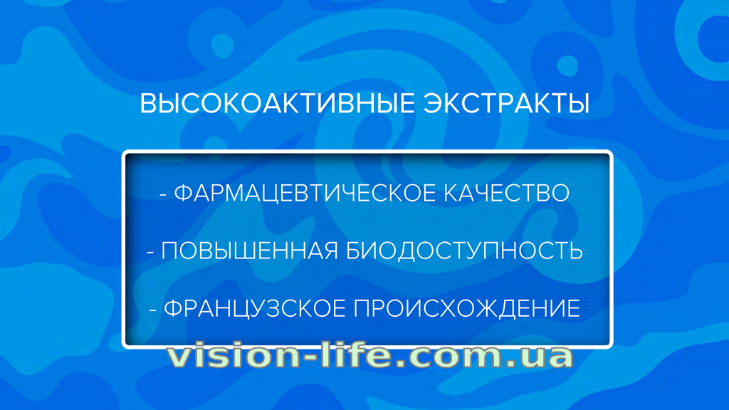 project v vision life 8
